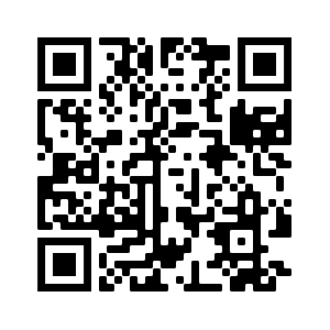 iPhone SORA app