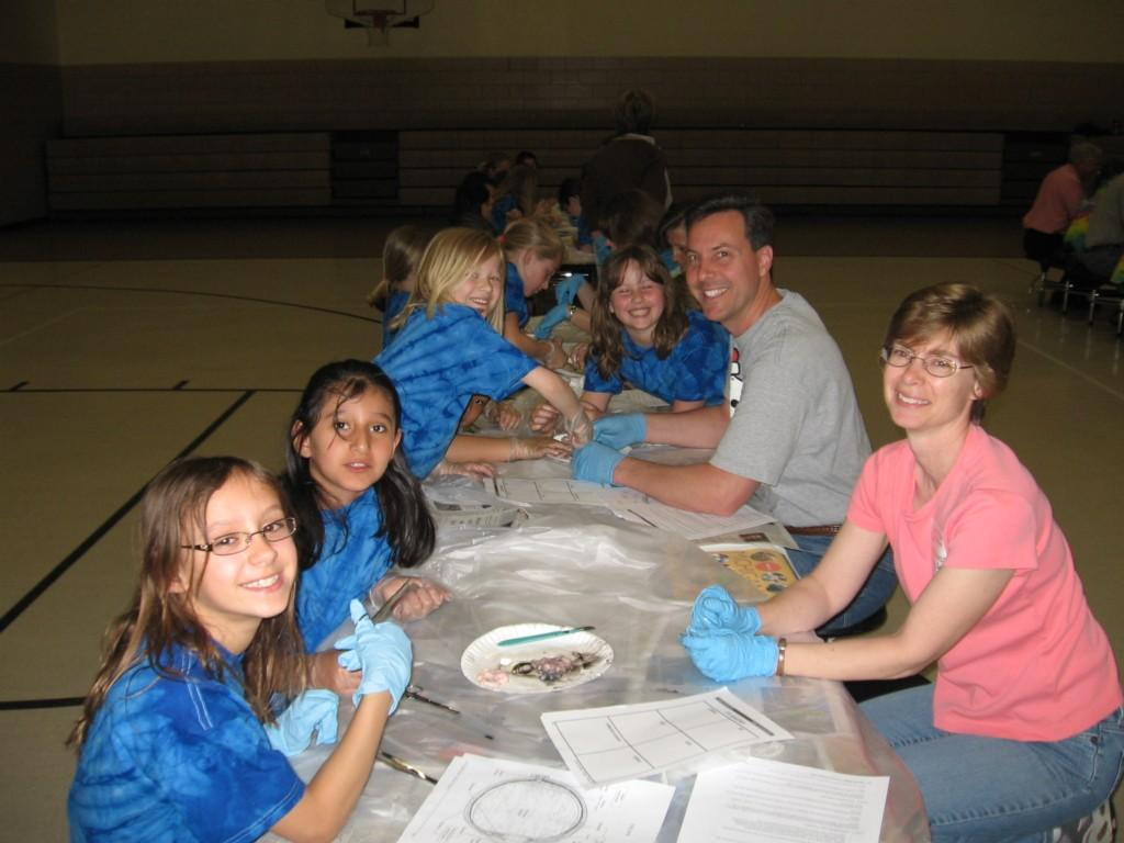 students in tie dye shirts dissect organs from pig