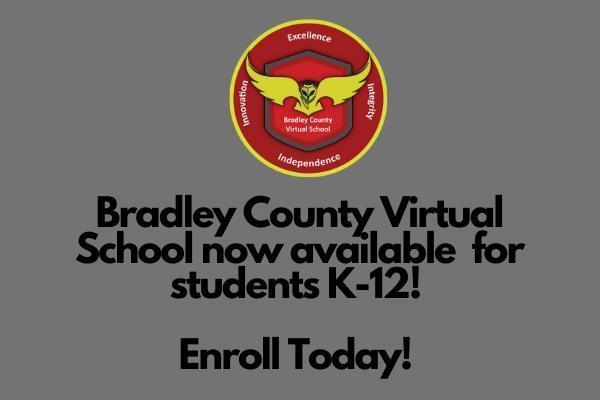 Virtual School now K-12