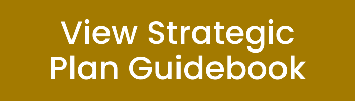 View Strategic Plan Guidebook