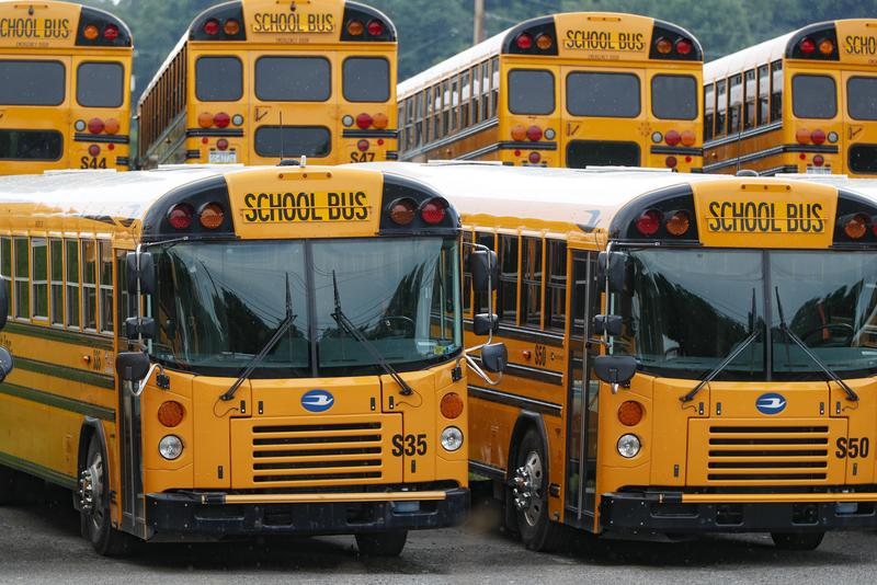 rows of yellow school buses lined up