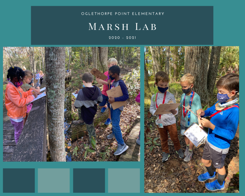 Marsh Lab at OPES Featured Photo