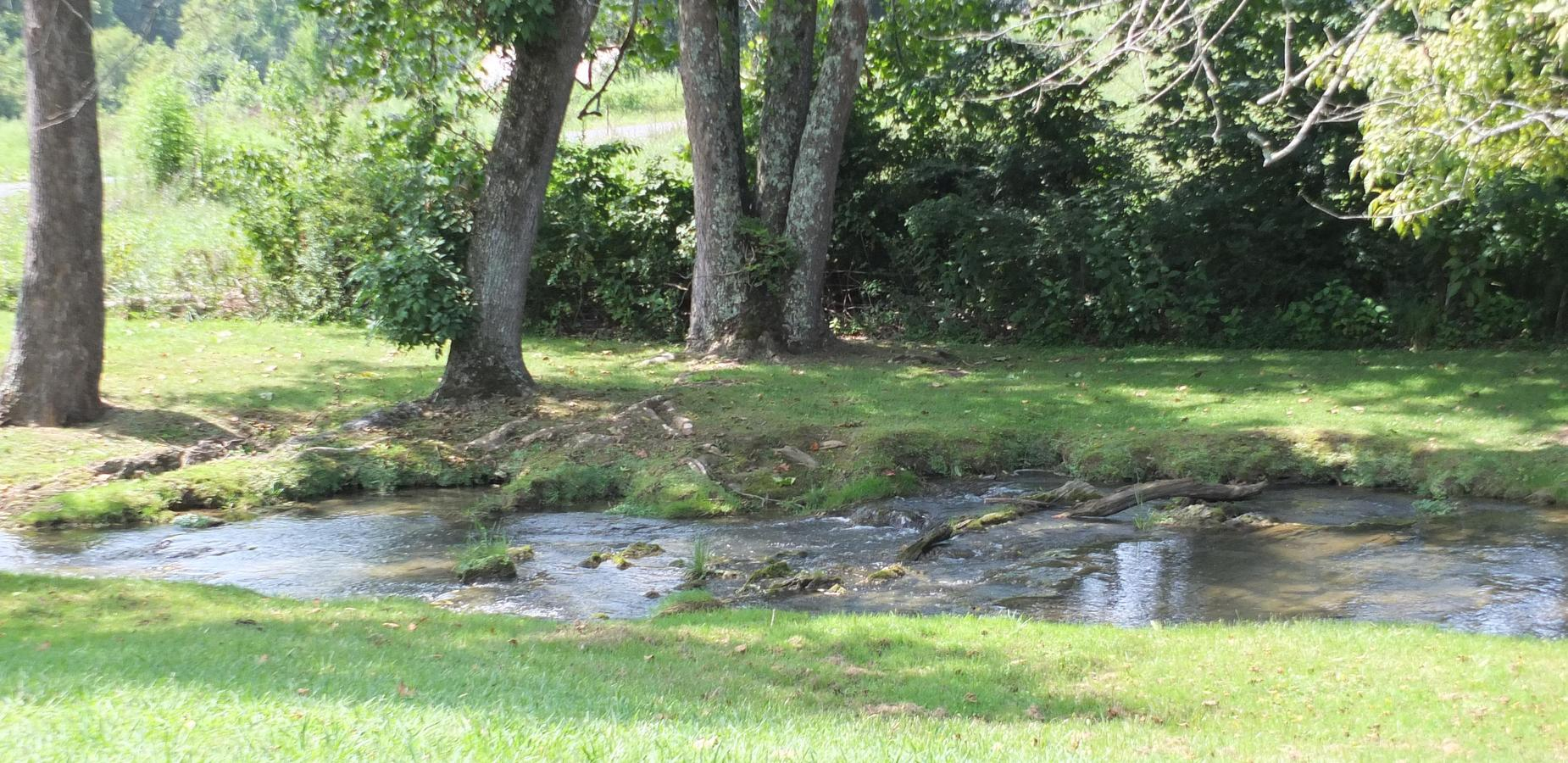 Picture of a stream running by some trees near a field.