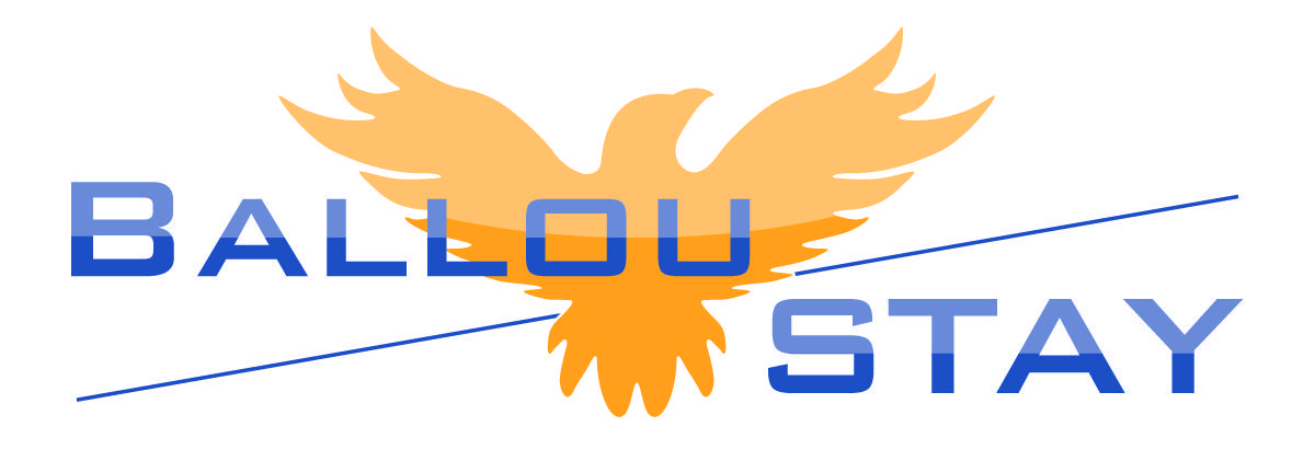 Ballou STAY Academy Logo