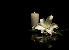 white lily and candles image