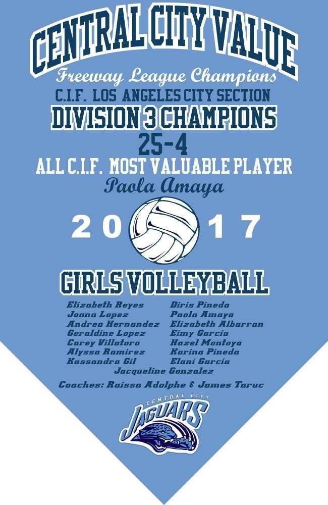 2017 Girls Volleyball Championship Banner