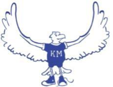 Picture of Kirby's Mill Mascot - Hawk