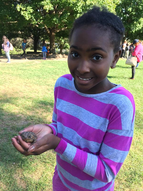 Student holds frog