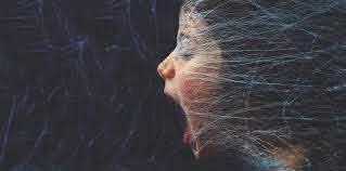 Why Do Some Brains Enjoy Fear.jpg