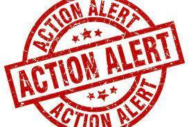 Take Action Now!  Catholic School Students Need Your Voice! Featured Photo