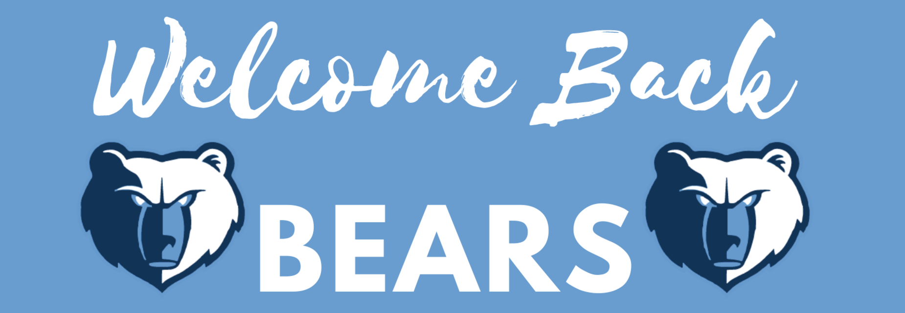 Welcome back bears