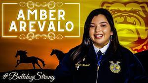Amber Arevalo