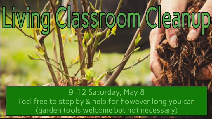 Living Classroom Cleanup