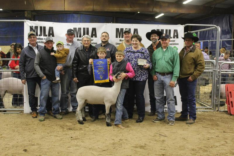 Stock Show Featured Photo
