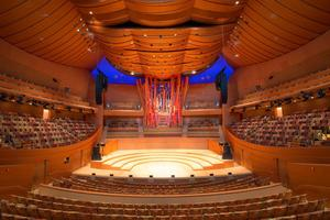 Walt Disney Concert Hall Inside.jpg