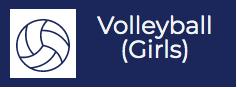volleyball (girls)