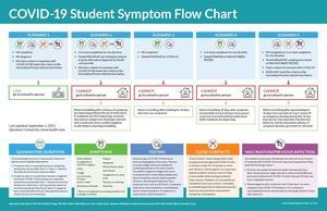 COVID Symptoms Flow Chart