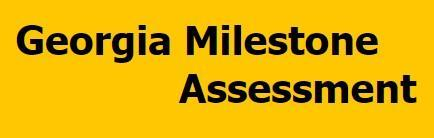 GA Milestone Assessment