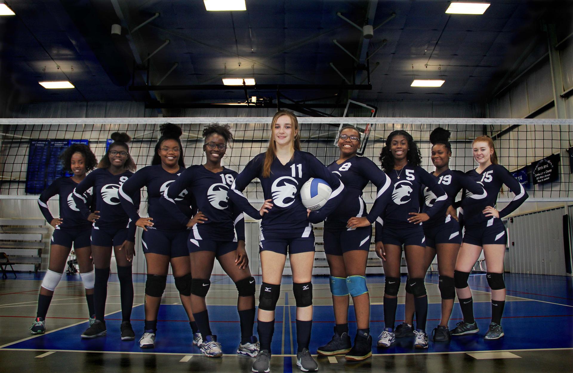2018 Varsity Volleyball Team