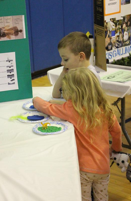 Gananda students exploring what makes the best fossils at the Science Fair 2020