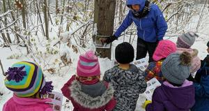 A small group of students gather at a tree and look at a picture of a bear.