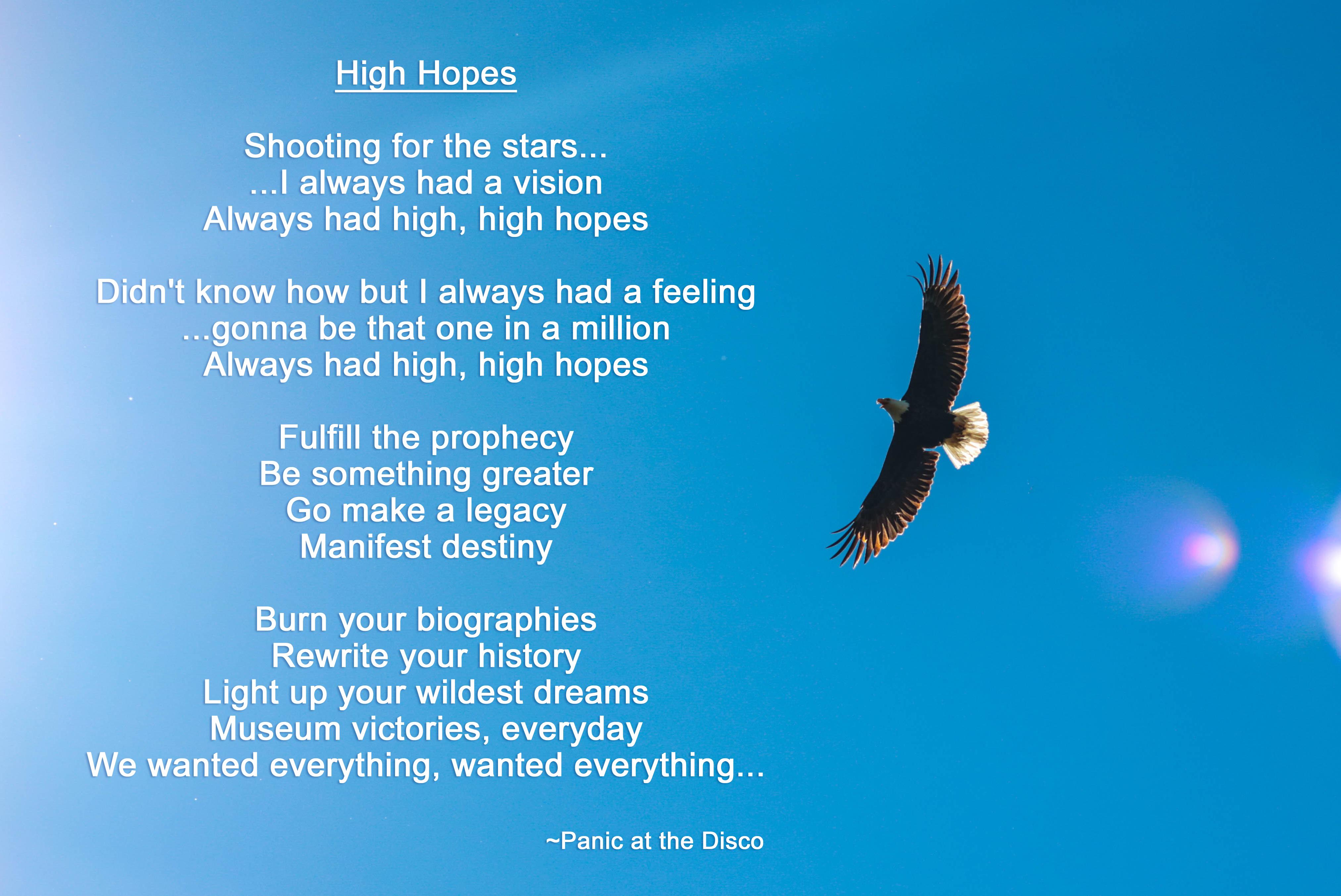 2019 Video - High Hopes Image