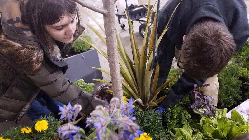 Hill Top Horticulture Class Keeps the Doctor Away at the 2019 Philadelphia Flower Show Featured Photo