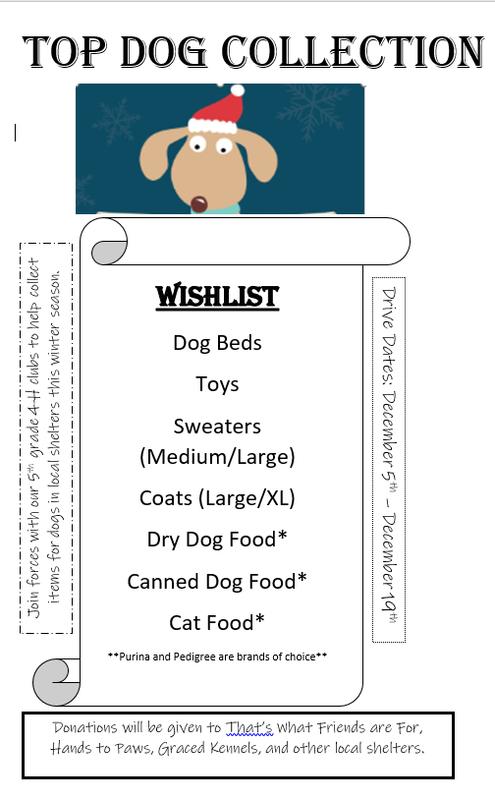 pet donation flyer