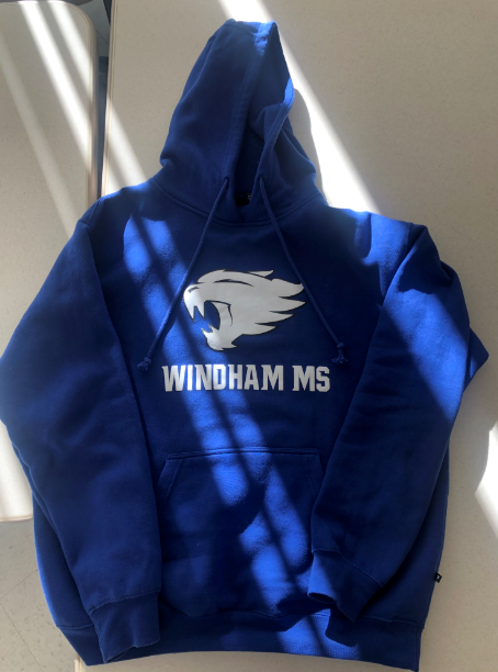WMS Sweater.PNG