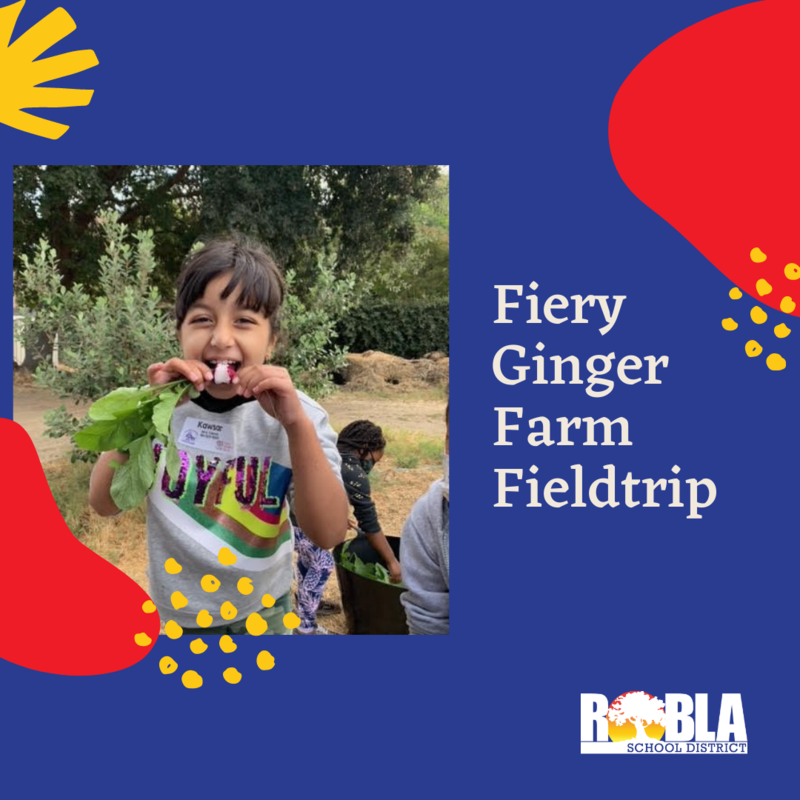 Image of girl eating radish and Fiery Ginger Farm Field Trip in text.