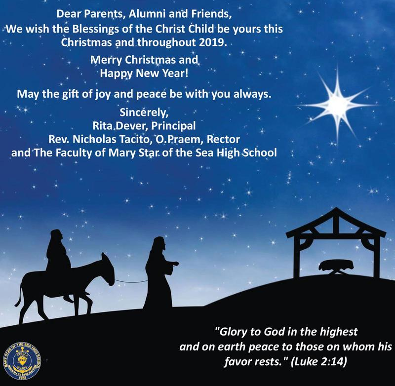 Merry Christmas From MSHS Featured Photo