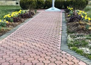 Path to the flagpole with the plantings starting to grow,