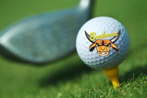 Golf Brahma.png