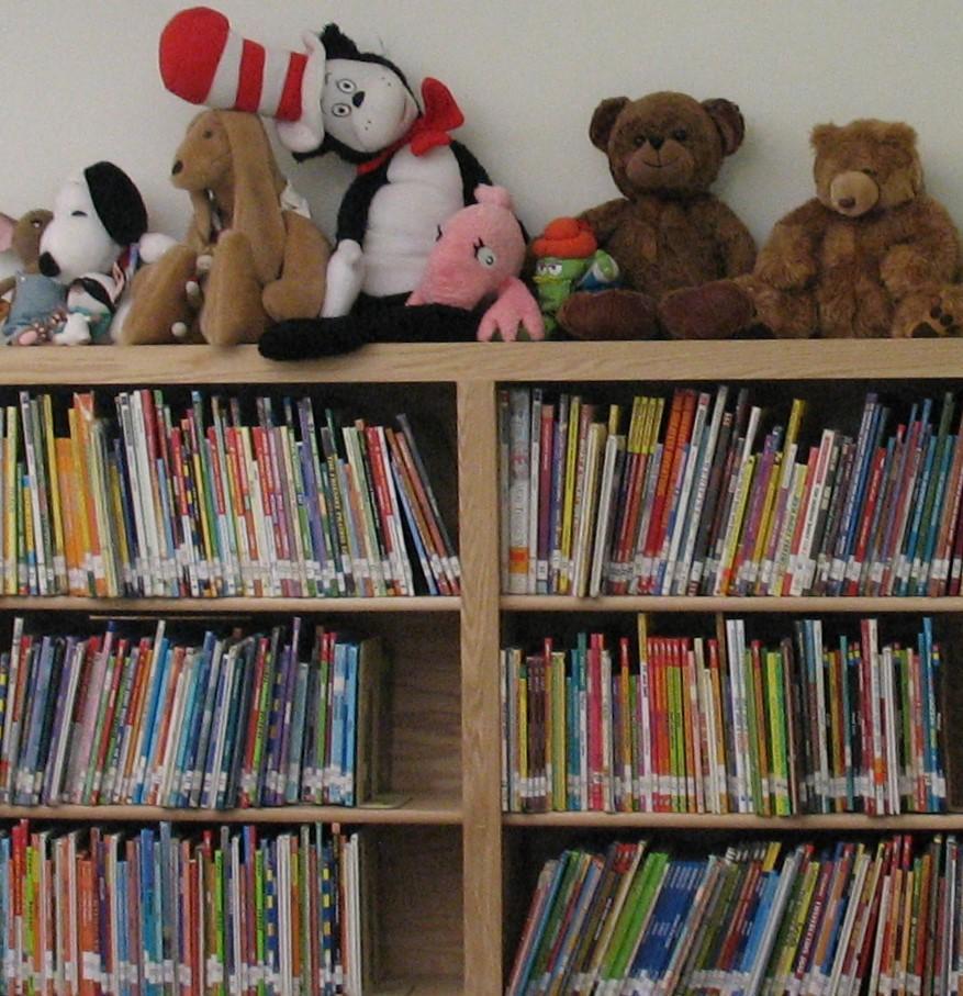 HSS Library Bookshelves