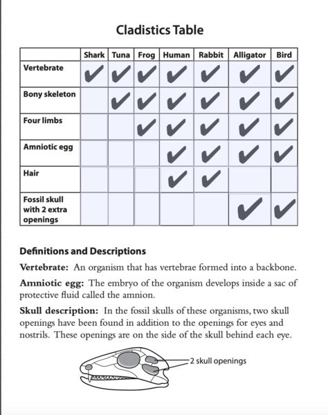 Vertebrate Information Table.png