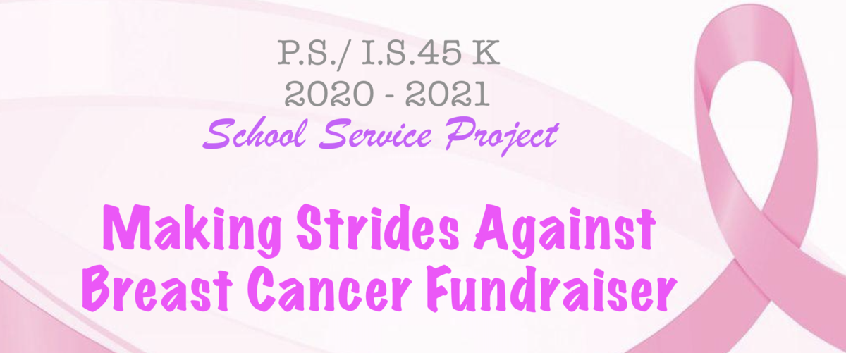 Making Strides Against Breast Cancer Fundraiser Banner