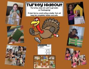Turkey hideout collage