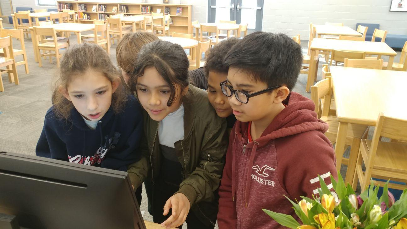 Digital Literacy in the library