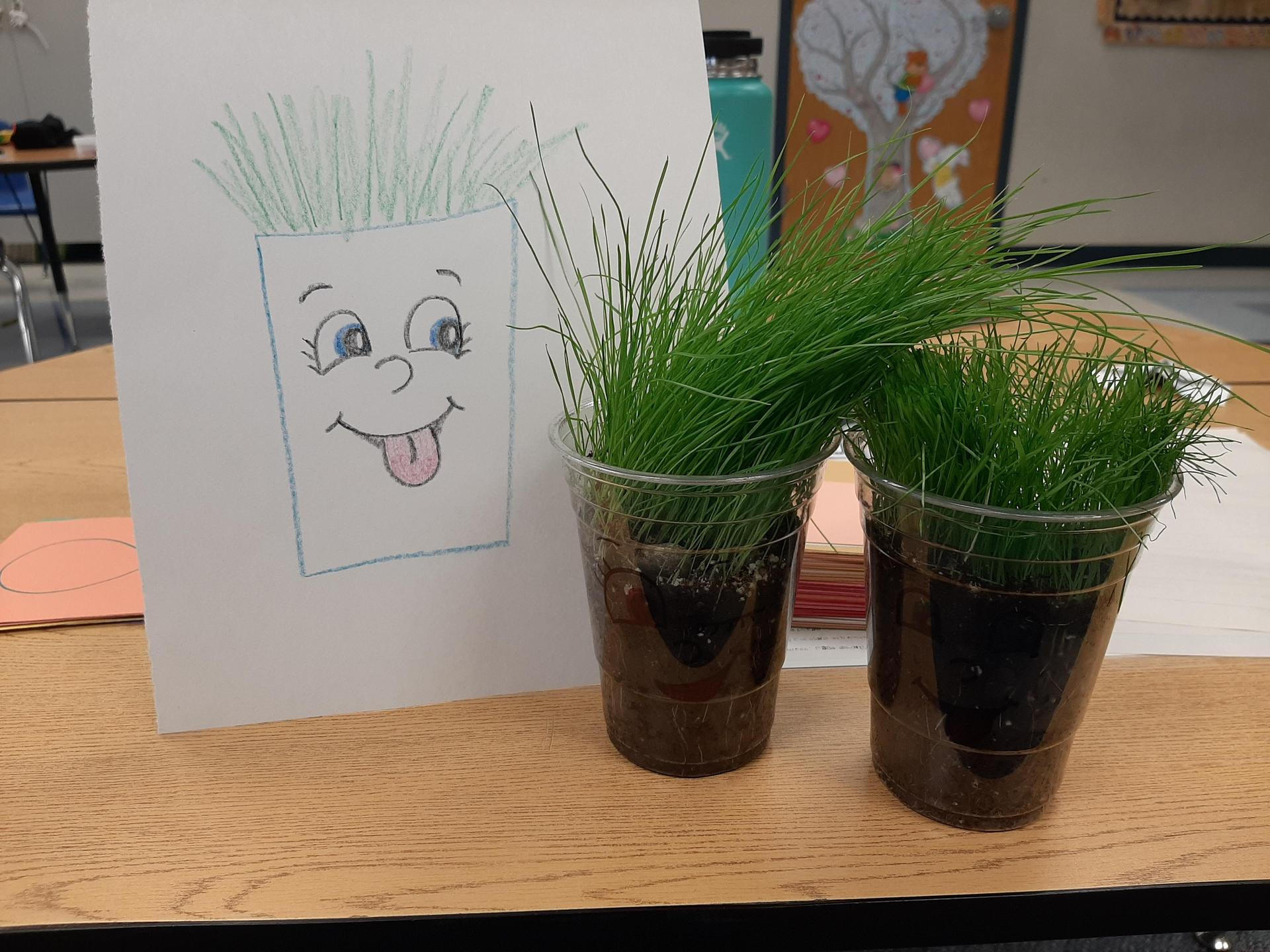 Students learning about plant life cycle