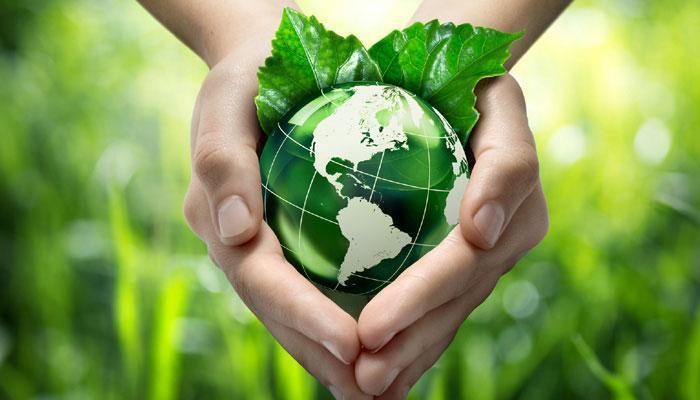 hands earth