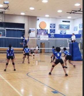 Lady Rams during 2019 volleyball season.