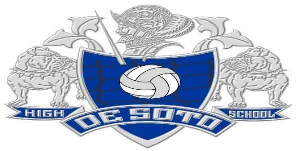 DHS logo with volleyball