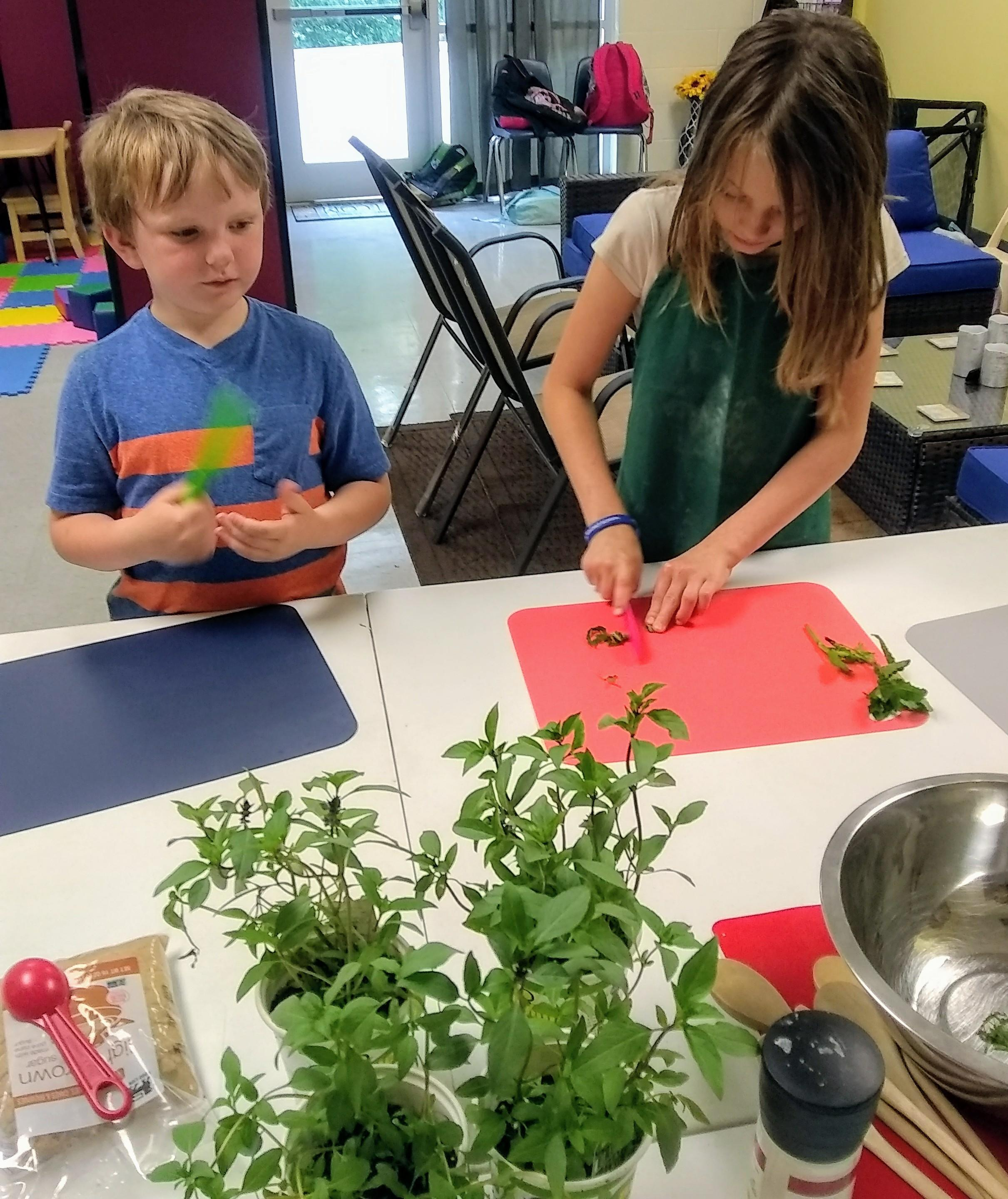 kids chopping herbs for salad