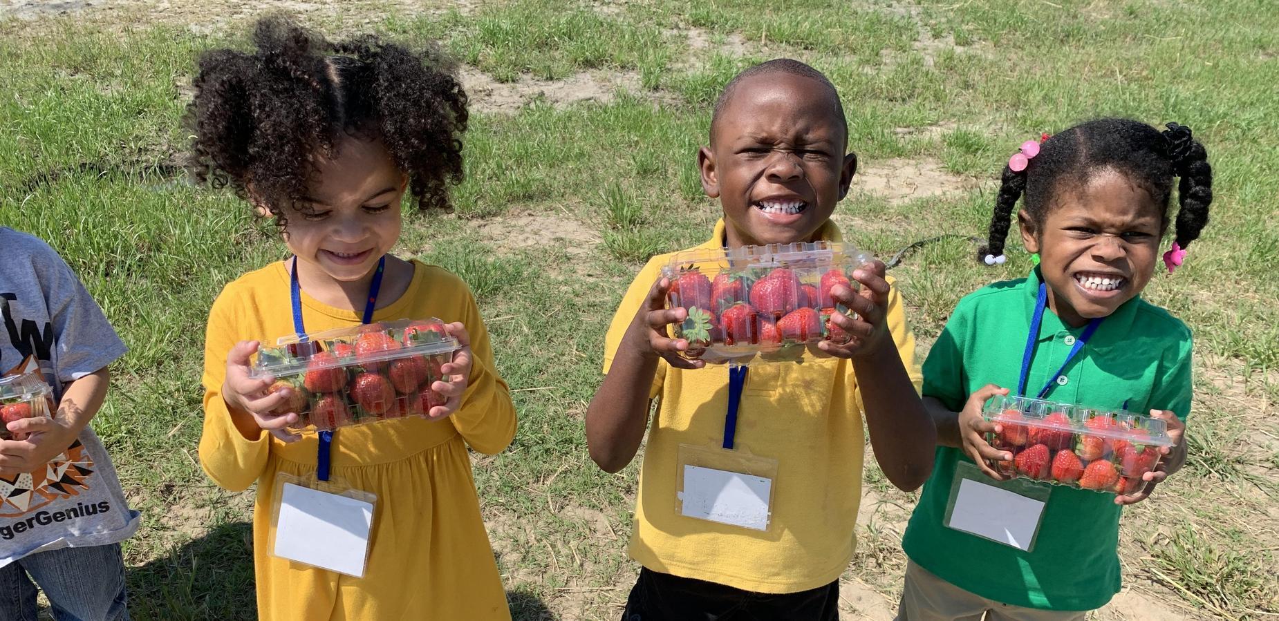 CD students at Strawberry Farm