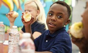 Boy eating apple during lunch time