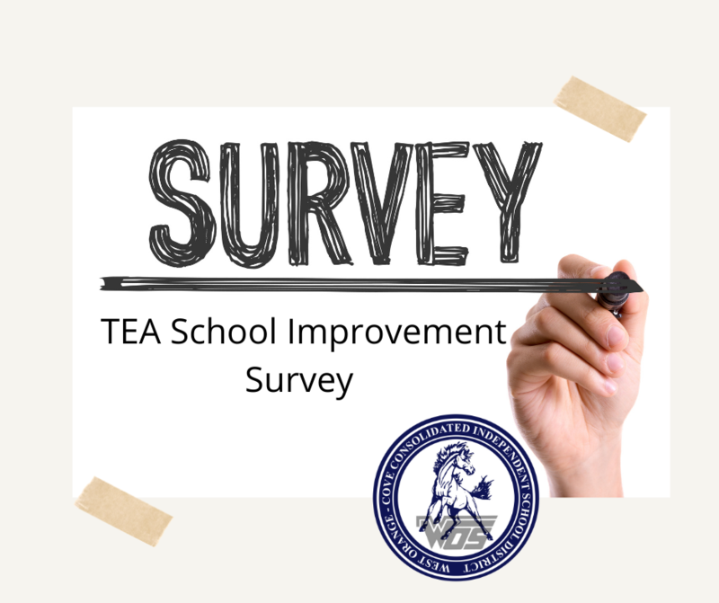 TEA Survey