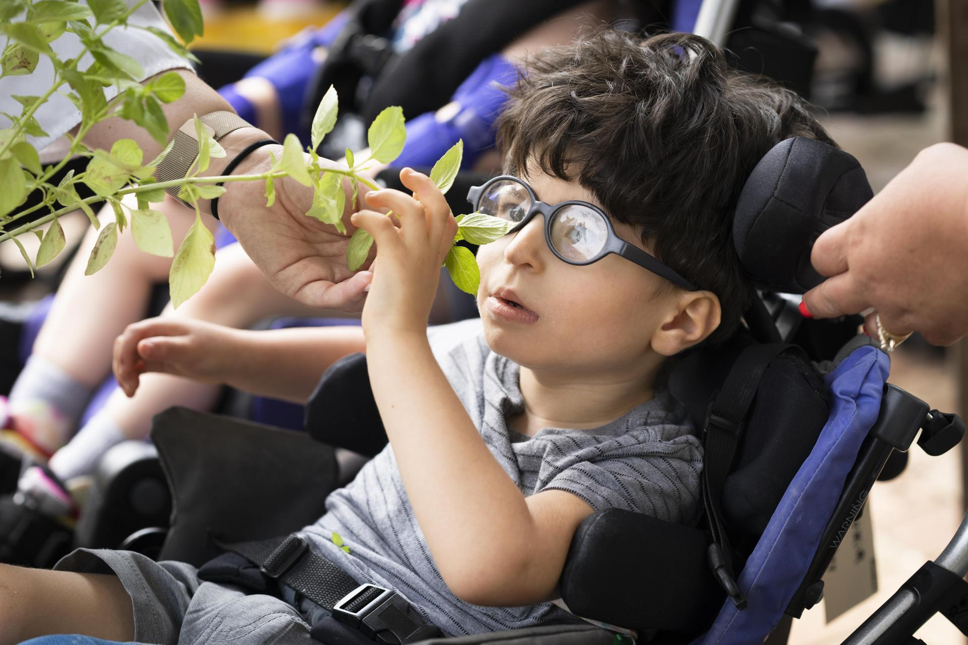 student examining his plant in horticulture class