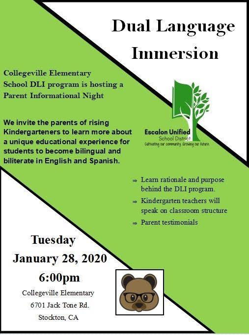 Dual Language Immersion Flyer