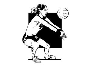volleyball figure