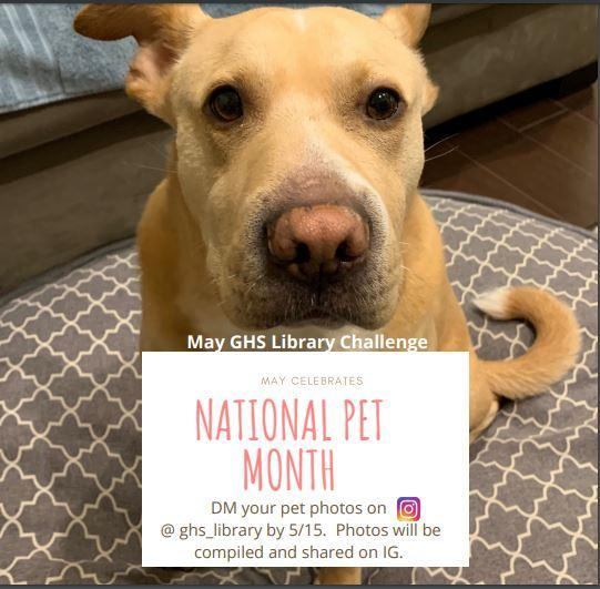 May Library Challenge: National Pet Month